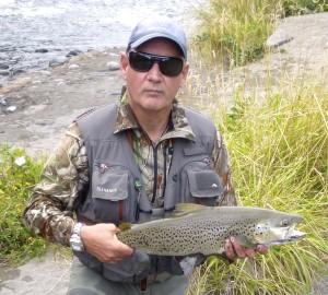 Scott Collins brown Upper Birch