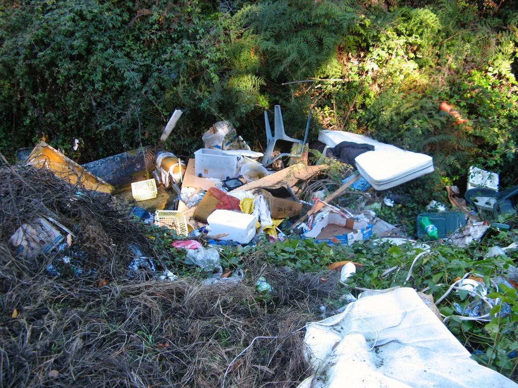Waitahanui rubbish tip