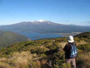 Mt Tihia 14