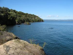 Whakamoenga Point walk 02
