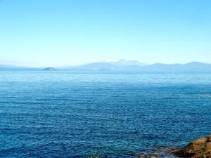 Whakamoenga Point walk 03