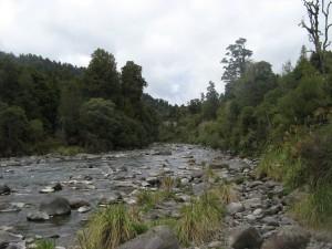 Wanganui 32