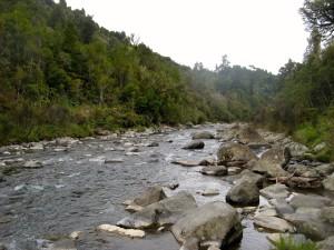 Wanganui 35