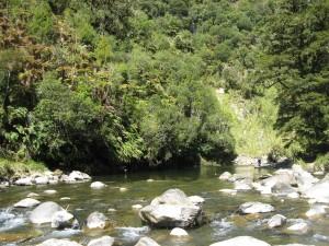 Wanganui 72