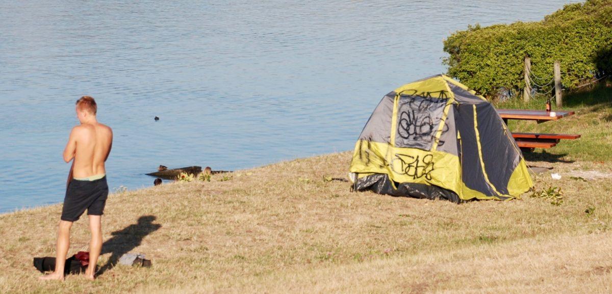 DSC_2295 u201c & Freedom camping problems? u2013 Tongariro River Motel
