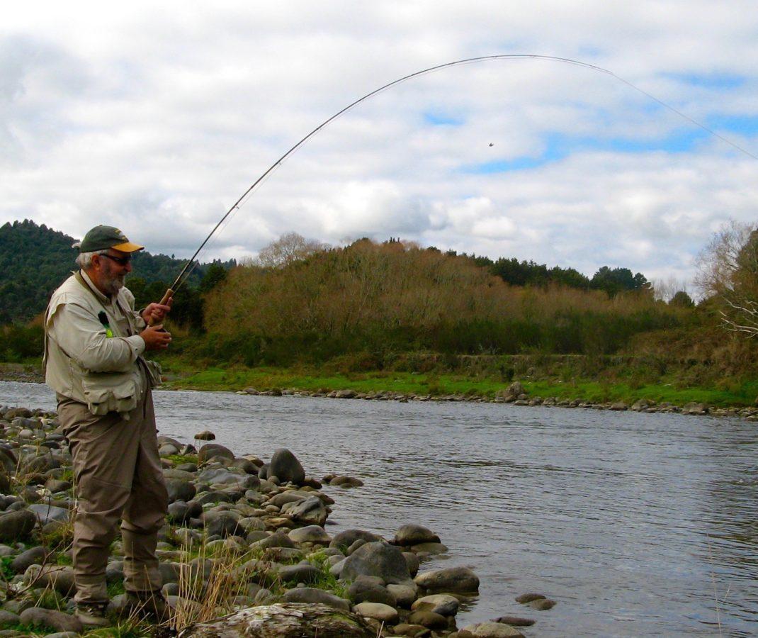 Fish game updates tongariro river motel for River fishing games