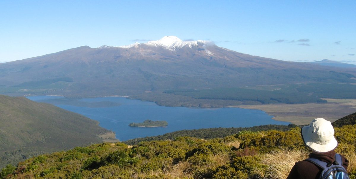 Lake Rotoaira from Mt Tihia